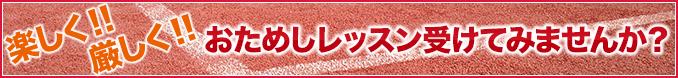 楽しく!!厳しく!! おためしレッスン受けてみませんか? ご希望のレッスンが無料、または、1,000円でおためし出来ます。