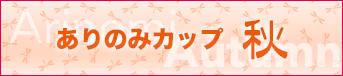 bnr_top_arinomi_03