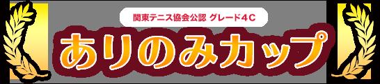 関東テニス協会公認 グレード4C ありのみカップ